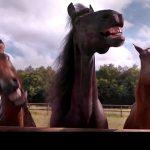 Els cavalls rient en un fotograma de l'anunci