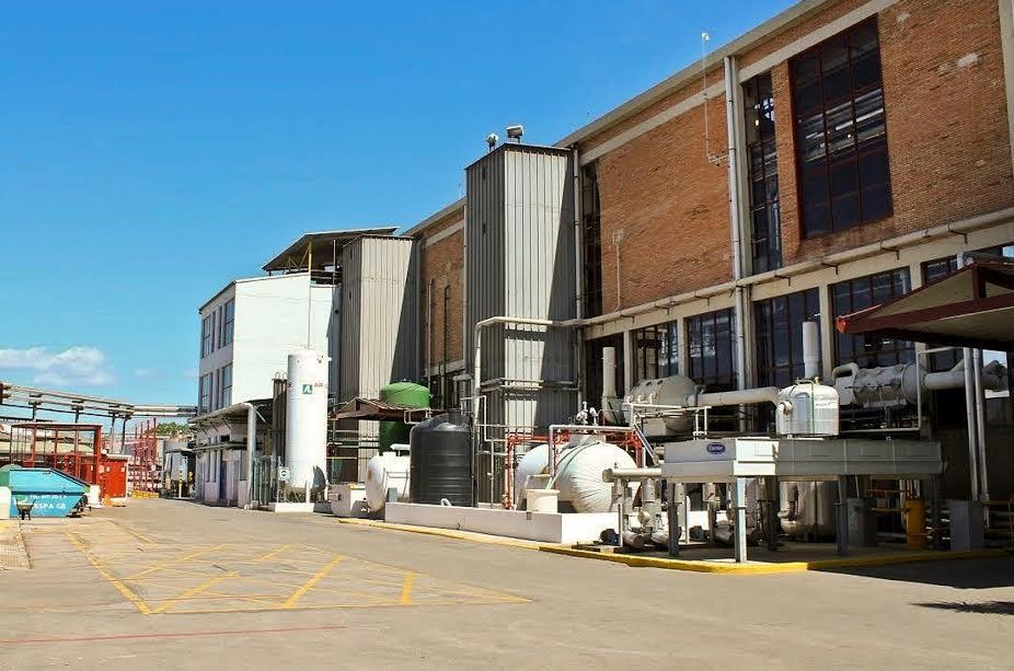 La planta d'Urqaima a Sant Fost