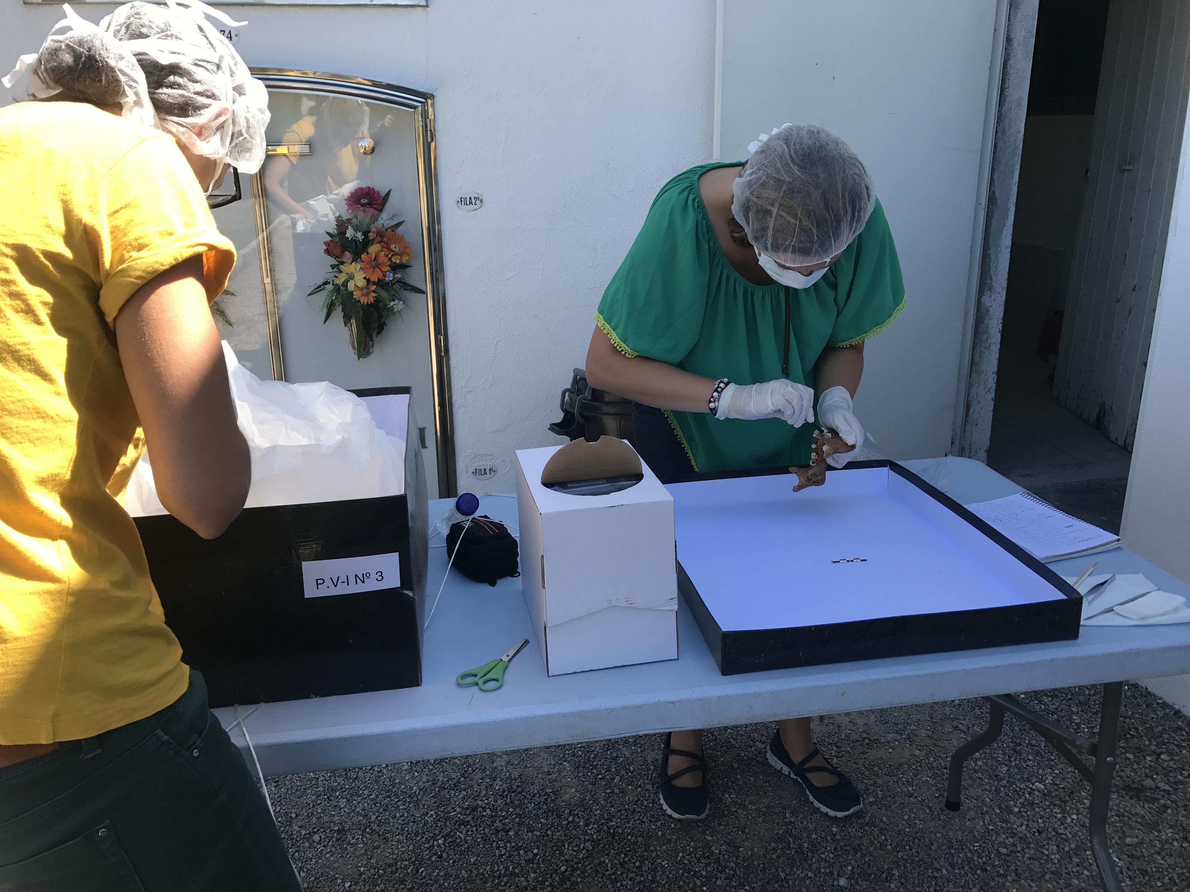 Tècnics de la Generalitat treballaven aquest dimarts al cementiri de Prats de Lluçanès