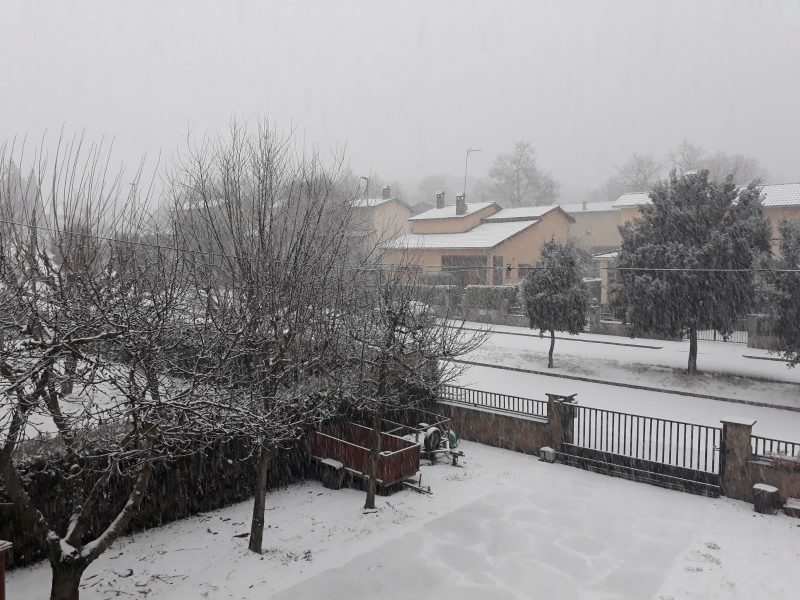La neu a Seva
