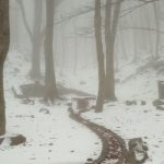 Imatge de Sant Marçal, al Montseny, en la nevada del 23 de gener