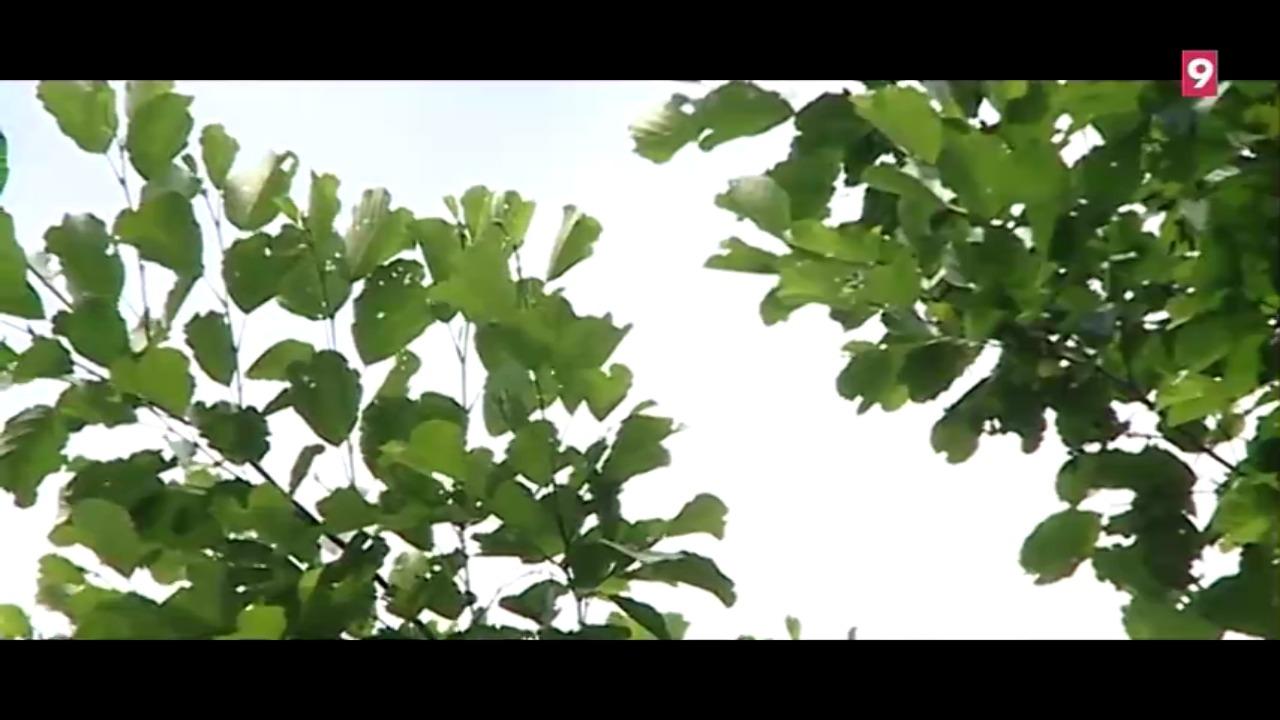 biodiversitat-i-medi-ambient114255-2018-07-06
