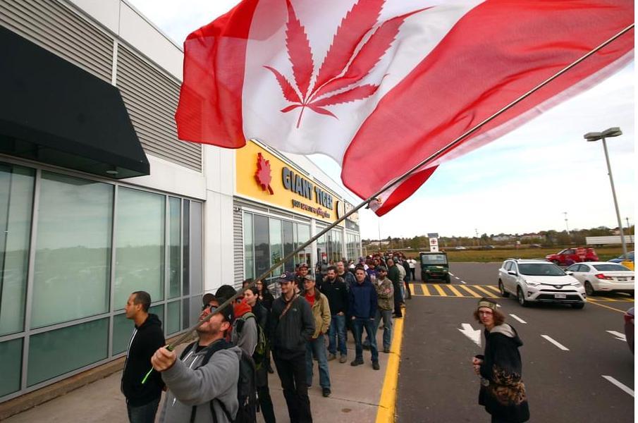 -Llargues cues per aconseguir cànnabis al Quebec.