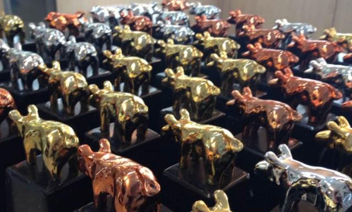 Els porc d'Or es donen aquest any a Lleida