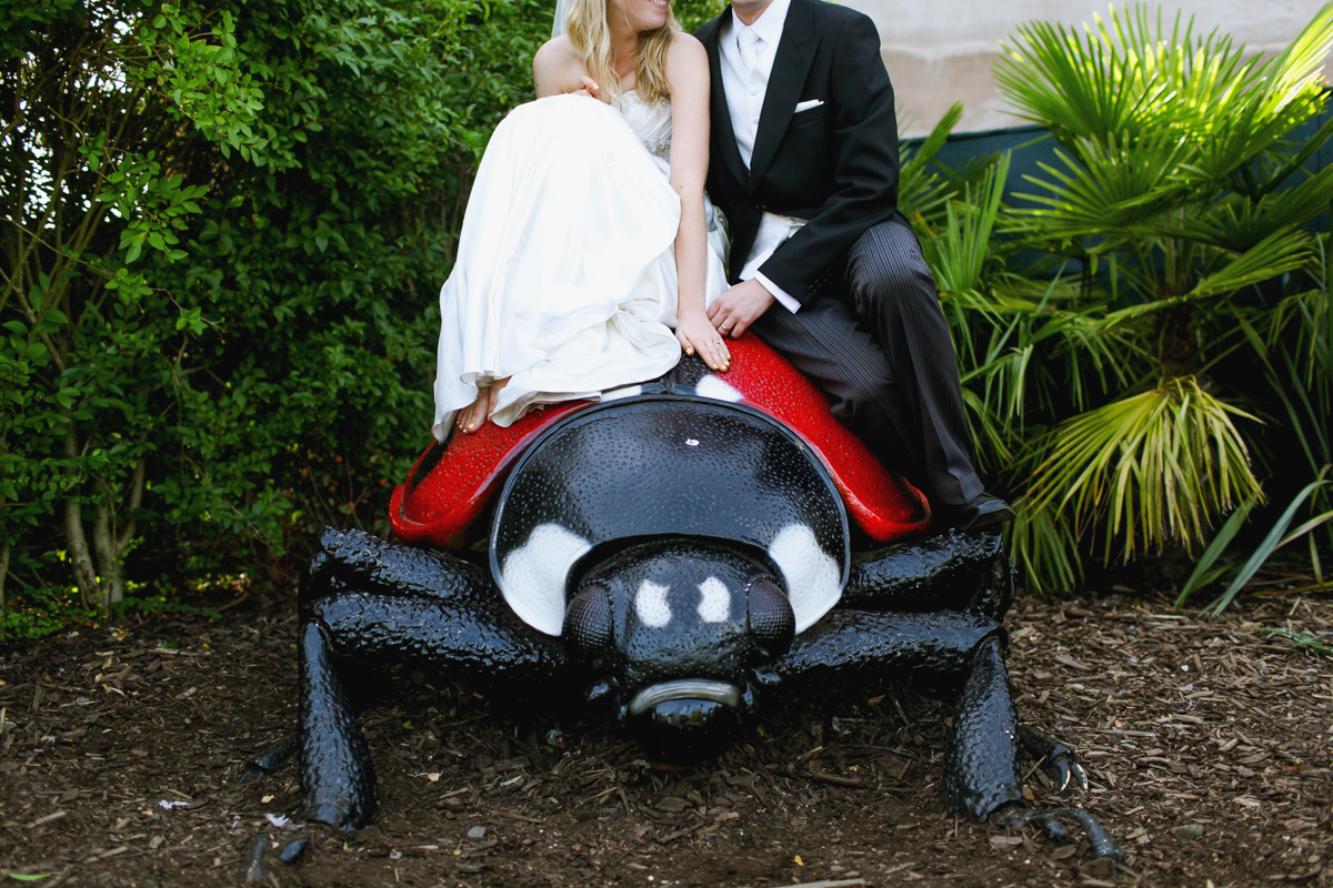 Chester-Zoo-Wedding-Photography--29