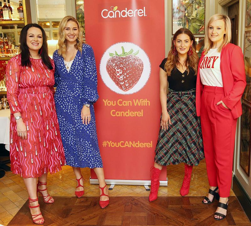 Canderel Ireland's Panel Event