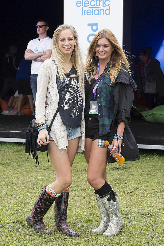 Electric Ireland at Electric Picnic 2014
