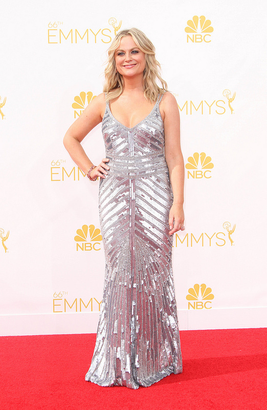 The Emmys 2014: Red Carpet