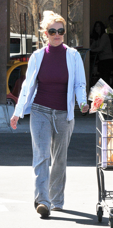 Britney Spears is spotted doing her grocery shop