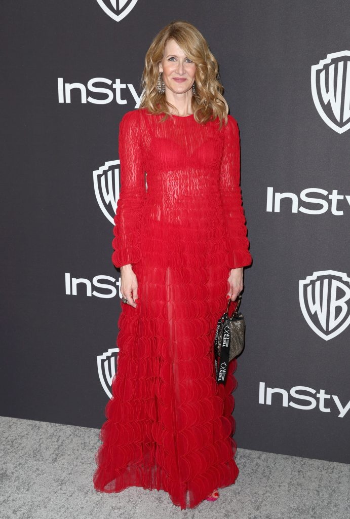 Laura Dern  attends the InStyle And Warner Bros. Golden Globes After Party 2019 at The Beverly Hilton Hotel on January 6, 2019 in Beverly Hills, California.  (Photo by Rich Fury/Getty Images)