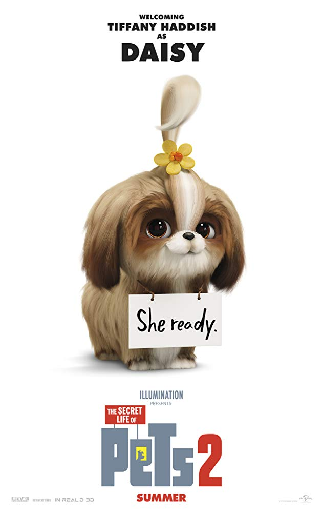 "Tiffany Haddish in <a href=""https://entertainment.ie/cinema/movie-reviews/the-secret-life-of-pets-2-393529/"">The Secret Life of Pets 2</a>"