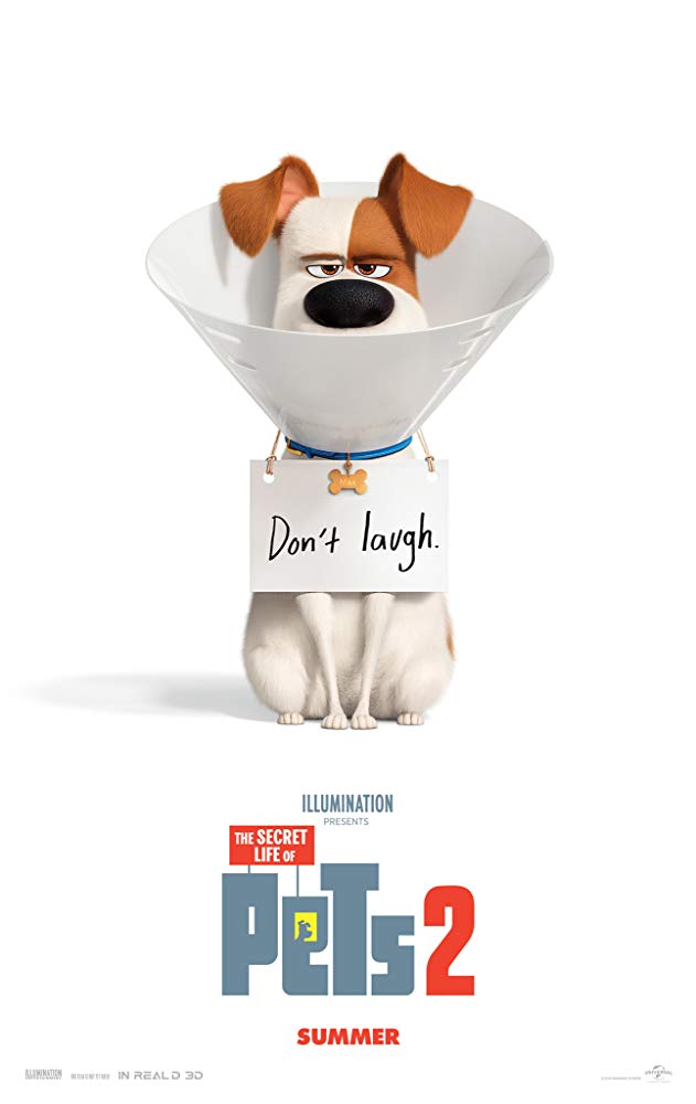 "Patton Oswalt in <a href=""https://entertainment.ie/cinema/movie-reviews/the-secret-life-of-pets-2-393529/"">The Secret Life of Pets 2</a>"