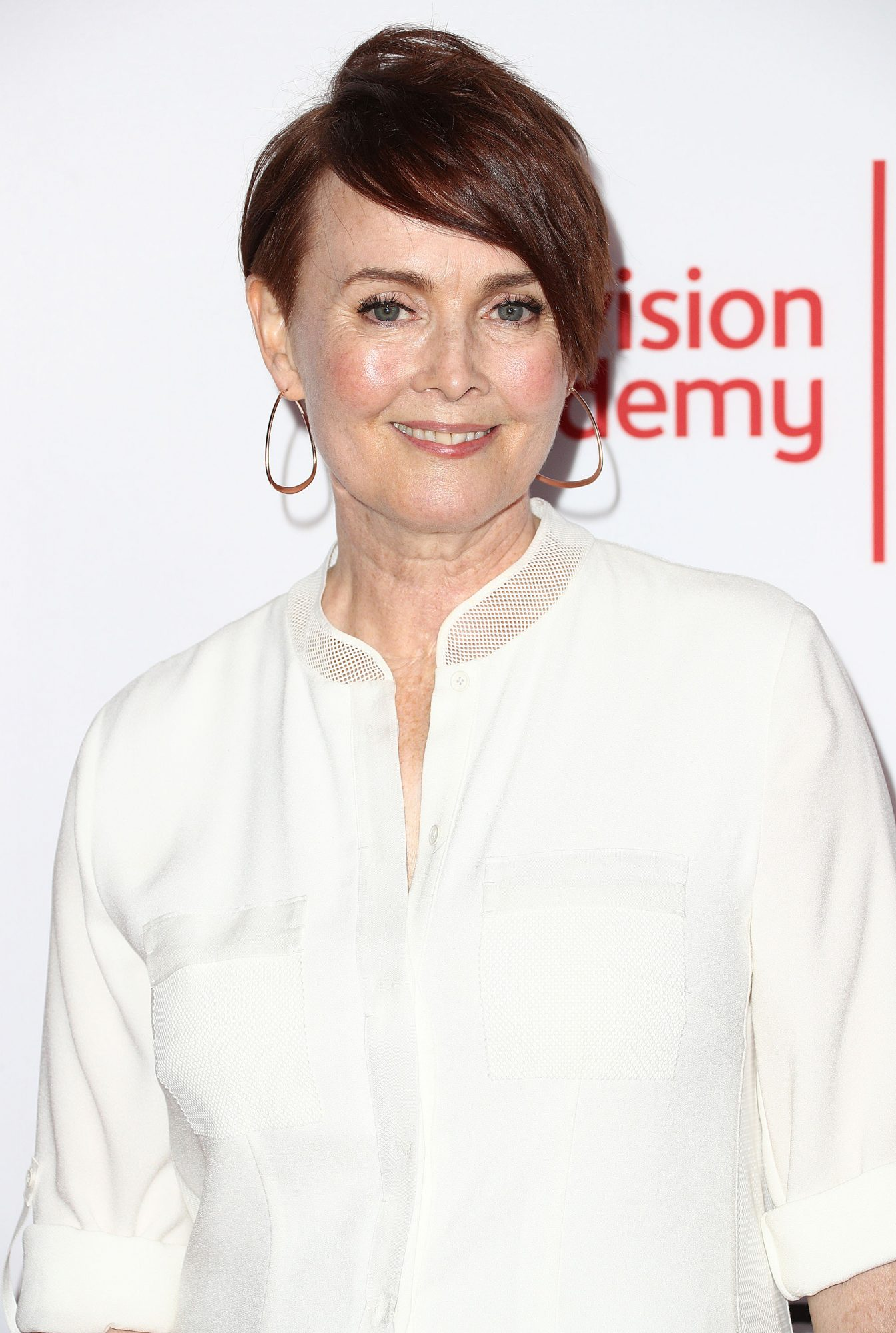 NORTH HOLLYWOOD, CA - NOVEMBER 15: Actress Laura Innes attends the Television Academy's 24th Hall of Fame Ceremony at the Saban Media Center on November 15, 2017 in North Hollywood, California.  (Photo by Frederick M. Brown/Getty Images)