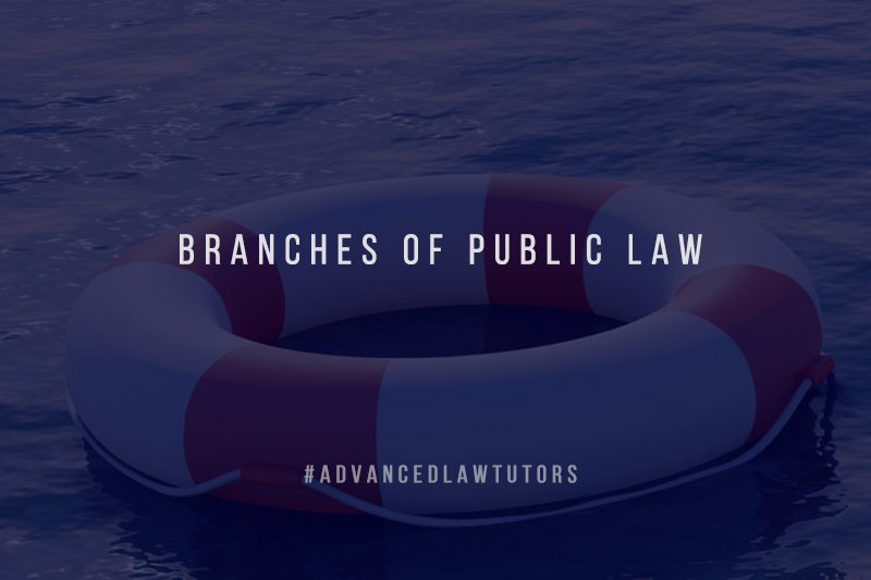 public law branches