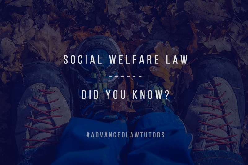 social welfare law