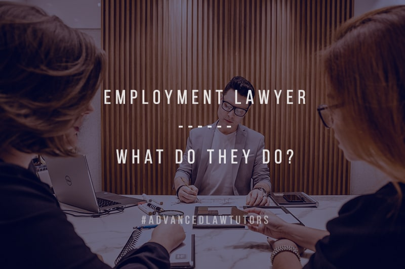 employment lawyer roles
