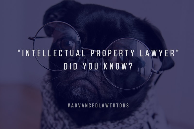 Intellectual-Property-Lawyer-did-you-know