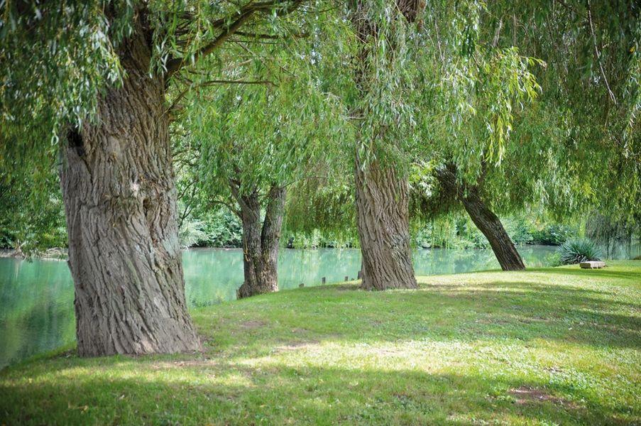 Moulin de Poincy - Parc 4