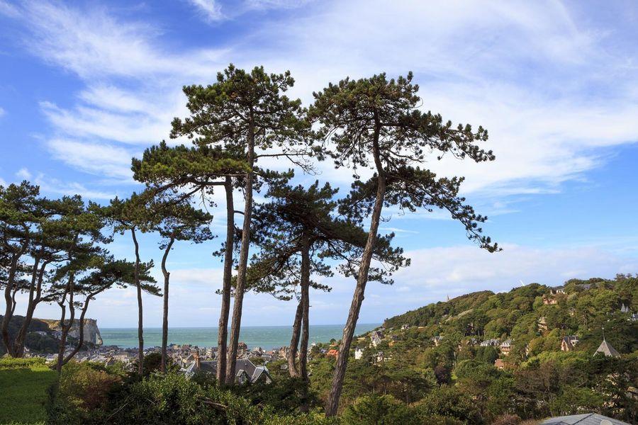 Domaine Saint-Clair - Vue sur la mer 2