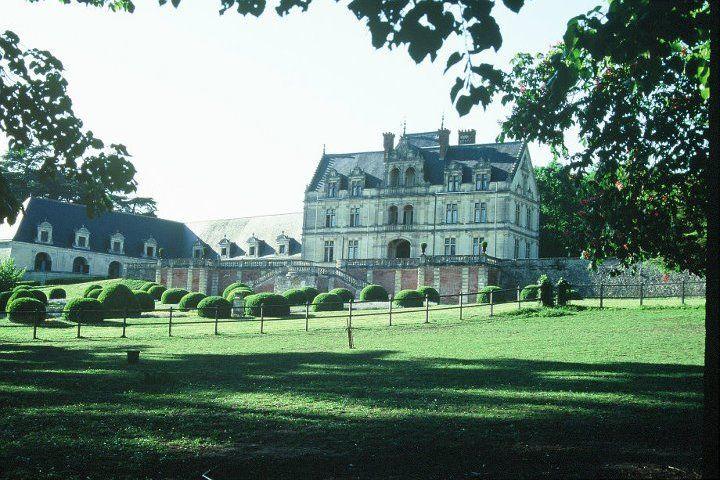 Château de la Bourdaisière - Parc 1