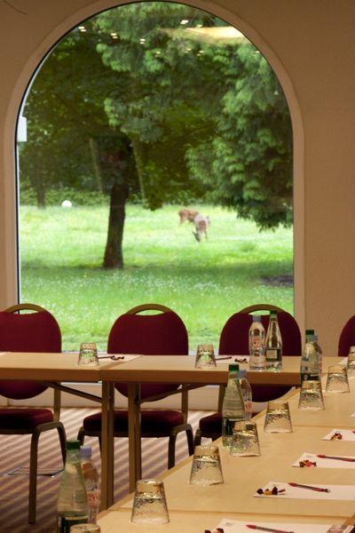 Hotel Mercure Parc du Coudray - Salle de réunion