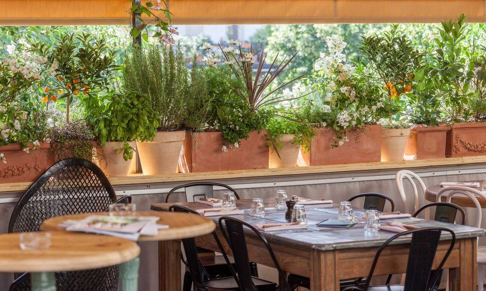 Auteuil Brasserie - Rooftop 4