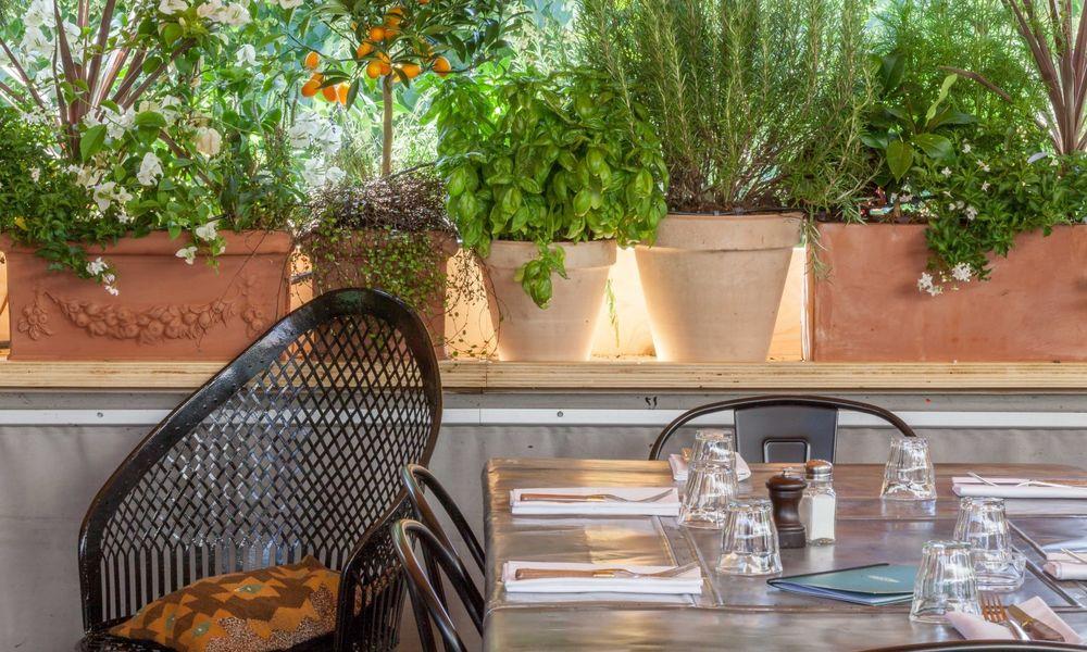 Auteuil Brasserie - Rooftop 5