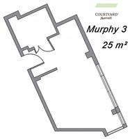Murphy 3