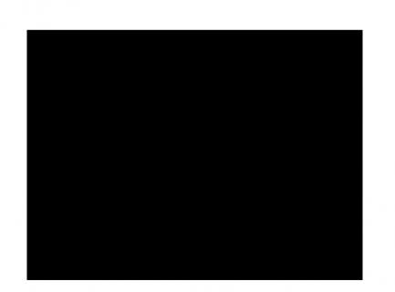 Logo-Carita2016-Noir