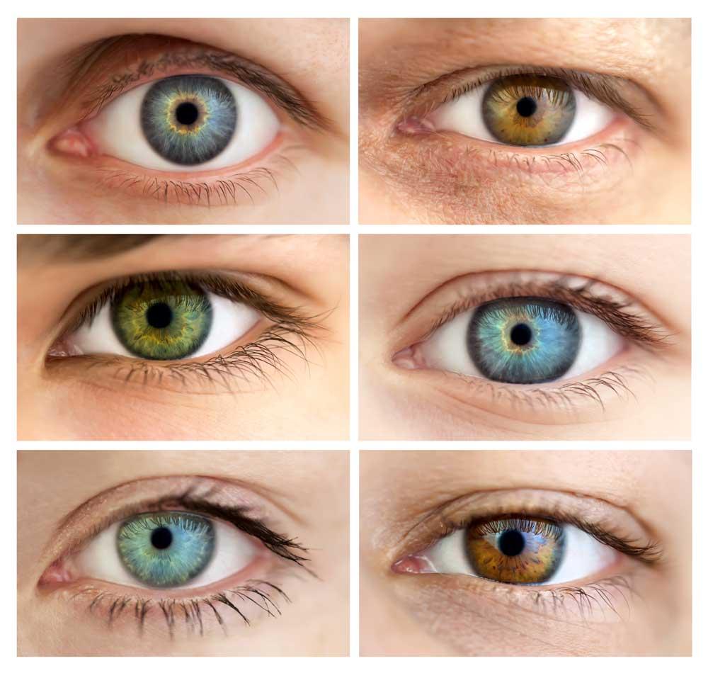 Как поменять цвет глаз домашних условиях