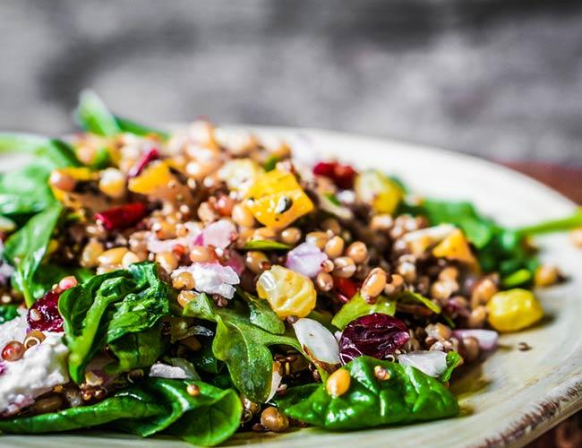 Quinoa Salad with Rocket Roasted Pumpkin and Cranberries