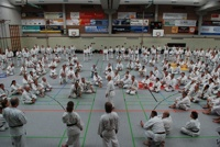Karateka in Wangen
