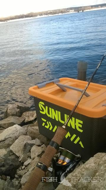 отчет рыбаков смоленской