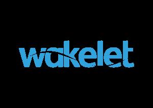 Wakelet_Blue