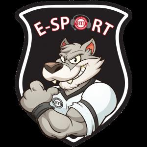 BTI E-Sport
