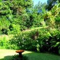 Veiw of the garden from your bedroom