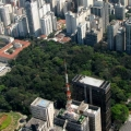 Trianon park at Paulista Ave.