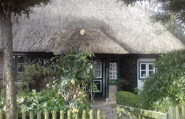 Thte entrance of the cottage