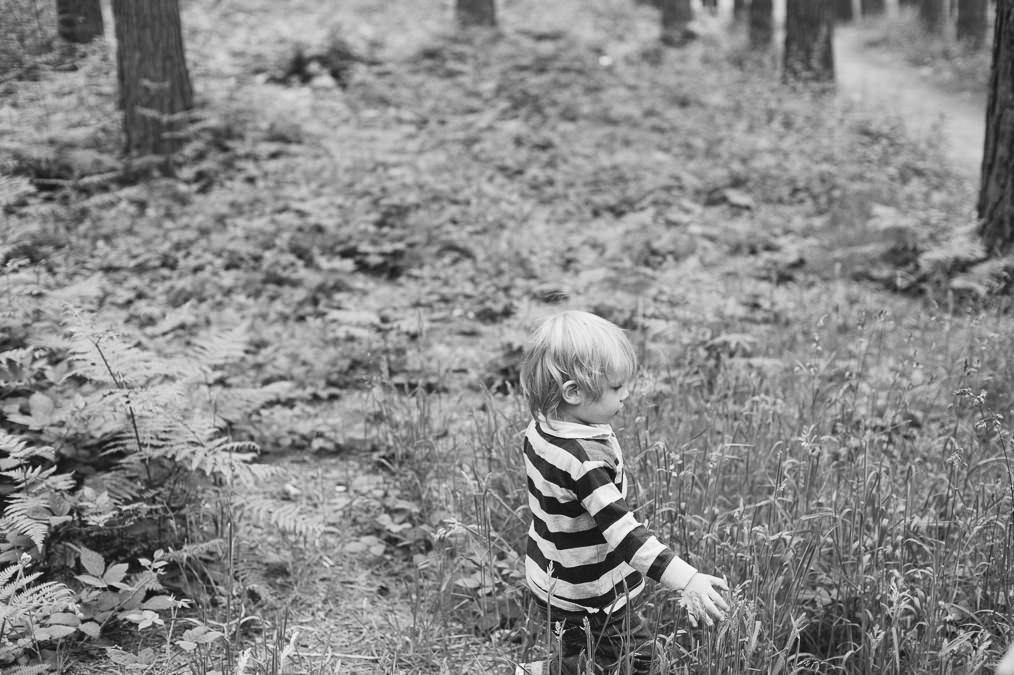 Merrills Family Shoot. Worksop Family Photography, Sherwood pines (71 of 92)_mini