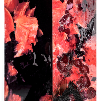 borden capalino. black sonya luxury firm. uv print, silicone, rice, and pigmented resin on polystyrene. 2017
