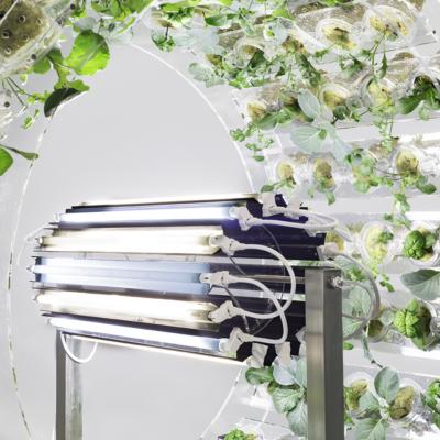 plant orbiter, detail.