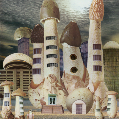 seana gavin. mushroom city. giclee prints on hahnemuhle photo rag paper 308gsm. 2016