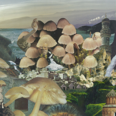 seana gavin. mushroomscape. paper collage on card. 2017.