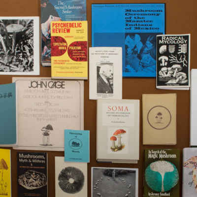 a selection of books and ephemera on mushrooms. curated by donlon books, london, uk.