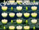 Kwitnące Kwiaty