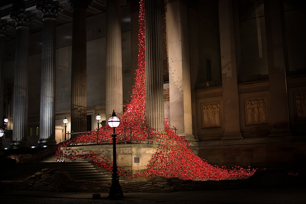 Liverpool Poppies