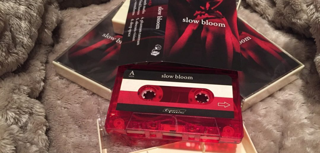 Slow Bloom (Photo Credit: Hail Hail Records)