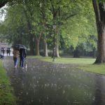 LIMF Rain