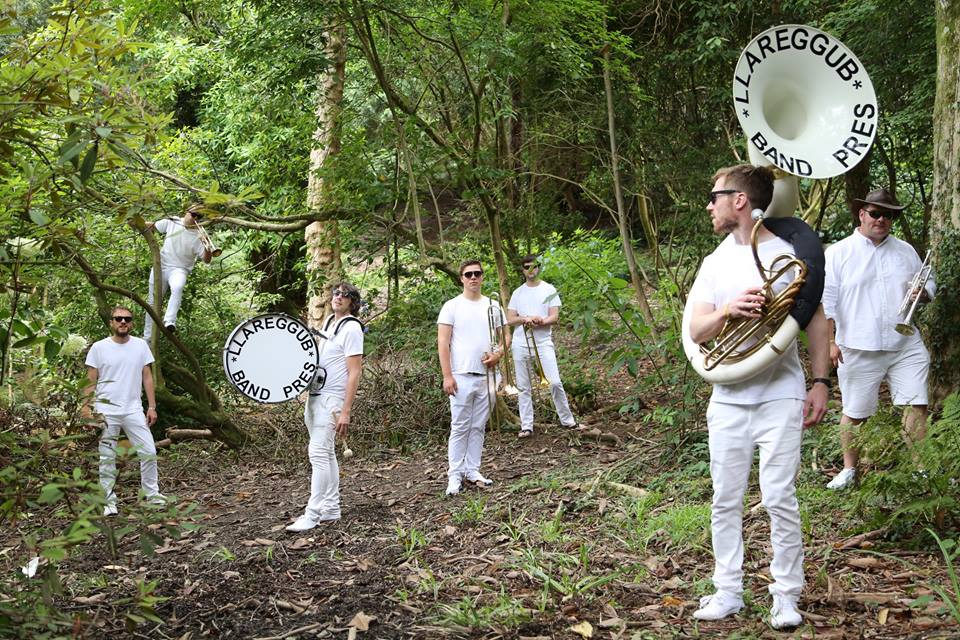 Band Pres Llareggub (from artists's Facebook page)