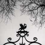 Bluecoat Gates by Robin Clewley